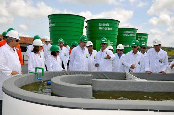 Conselho propõe elevar para 15% em 2023 mistura de biodiesel no diesel